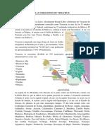 341295849-Las-10-Regiones-de-Veracruz.docx