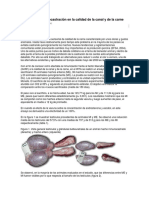 Efecto de La Inmunocastración en La Calidad de La Canal y de La Carne