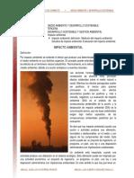 14._Impacto_ambiental_lectura_2009_.pdf