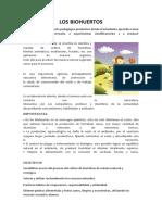 LOS BIOHUERTOS.docx