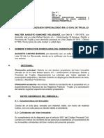 Demanda Delimitracion de Areas y Linderos