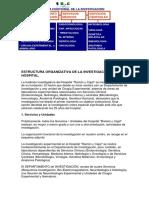 estructura_invest.pdf