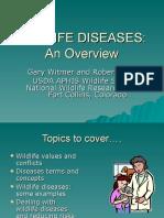 Wildlife Diseases Overview