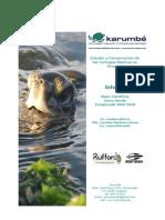 ReporteBCCV2010