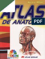 Mic atlas de Anatomie Ed.all TEKKEN