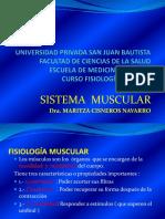 Sistema Muscular 2017- Parte 2