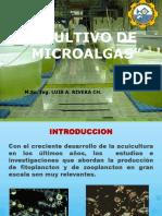 1. Cultivo de Microalgas