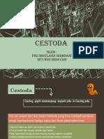 CESTODA ( Echinococcus Granulosus )