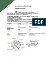 Basic Principle of Microbiology