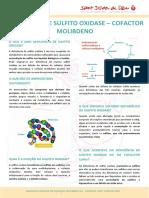 Sulfito_oxidase_PO_DIP.pdf