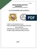 Informe 1 Caracterizacion de Mineral (1)