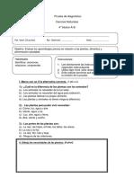 Prueba de Diagnostico de Ciencias 4 Basico
