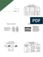 SEMEIOTICA AP.RESPIRAT.pdf