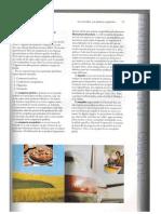 TEMA 4 MERCADOS.pdf