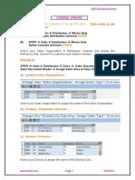 solutions-to-common-sap-sd-errors.pdf