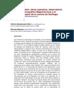Cerro_Wanguelen_obras_rupestres_observat.pdf
