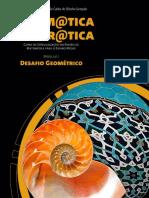 Livro  DESAFIO GEOMÉTRICO