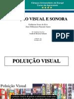 Poluição Visual e Sonora