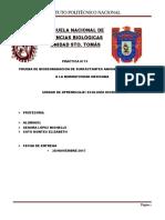 practica-12-ecologia terminada.docx
