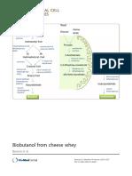 Biobutanol From Cheese Whey