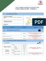Nro.01-DistritoLurigancho.pdf
