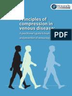 Principios of Compression in Venous Desease