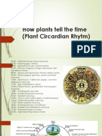 How Plants Tell the Time (Plant Circardian)