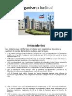 Presentación Organismo Judicial.