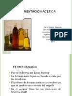 326042903-FERMENTACION-ACETICA