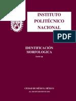 Identificación Morfologia de Isaria sp (Barret y Hunter 1998 ).