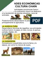 Actividades Económicas de La Cultura Chaín