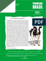1 AGRONEGÓCIOS.pdf
