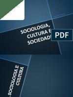 03.Sociologia_ Cultura e Sociedade