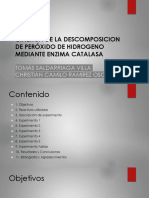 Presentacion PNE