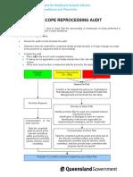 audit_endoscopy.doc