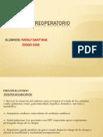 Pre Operatorio- Pratica Tq