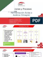 309845327-FERMENTACION-ACETICA-pptx.pdf