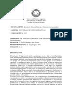 Livov Dotti Programa Seminario Doctorado UCA Schmitt