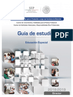 5 Director Educacion Especial