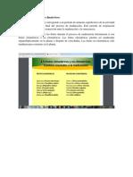 Frutos climatéricos y no climatéricos.docx