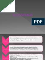 presentacionflujogramas