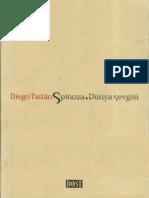 Diego Tatian - Spinoza. Dünya Sevgisi