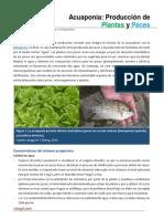 Acuaponia. Produccion de Plantas y Peces.pdf