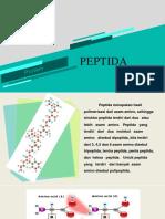 PEPTIDA & METABOLISME