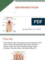 Diagnosis Penyakit Pulpa