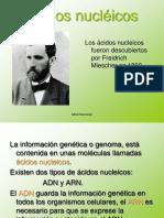 acidos nucleicos