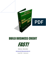 Build Business Credit Fast Manual (1)