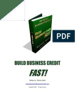 Build Business Credit Fast Manual (1)