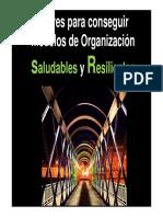 Claves Para Conseguir Modelos de Organización Saludables y Resilientes