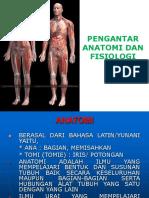 279667963 01 Pengantar Anatomi Fisiologi Ppt